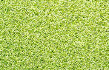 EG-Colourful---Lime-fv
