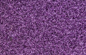 EG-Colourful---New-Lilac-(fv)