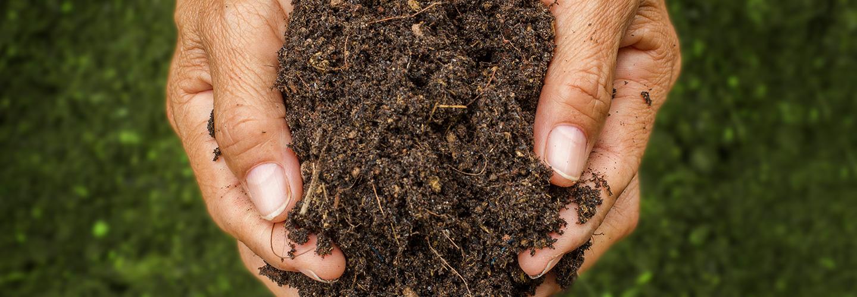 biodegradable-header