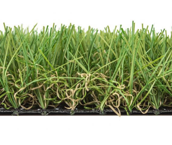 Edel Grass Euro Nm 50 close up
