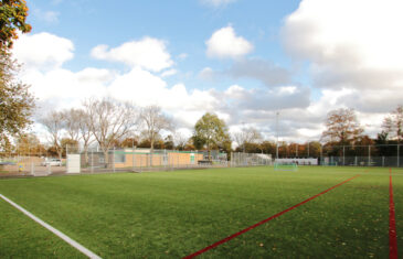 GreenFill: innovative and environmentally friendlyinfill grain for artificial turf pitches